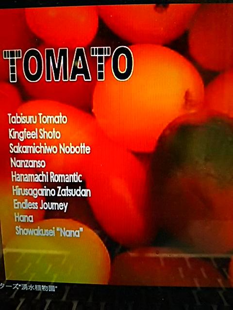 遂にチチクリギターズのニューアルバム「トマト」完成!チチクリ催事「10年史‐NO BORDER‐の会場にて販売開始!だマロン♪