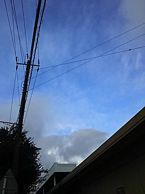 天気予報が当たって午後には雨が上がり青空も♪