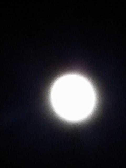 今夜は十三夜(栗名月、豆名月)ですね~!( v^-゜)♪