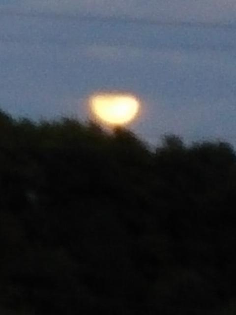 今日の夕空に浮かび上がった富士と月
