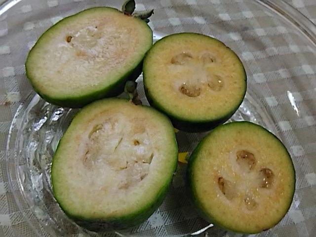 パイナップルグァバ(フェイジョア)収穫~♪