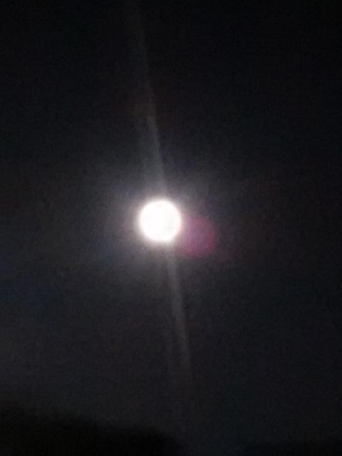 今夜はスーパームーンのお月さま♪