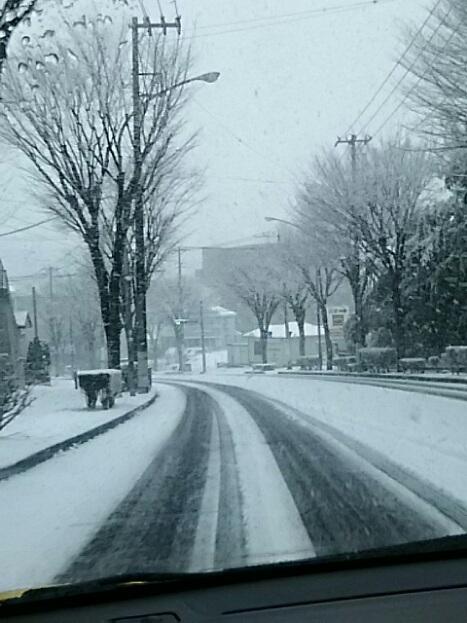 大雪警報が出ています!