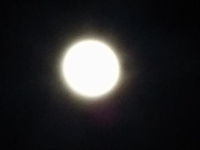 今夜のお月様は「スーパーブルーブラッドムーン」と呼ばれる珍しい神秘的な満月だそうですよ!( v^-゜)♪