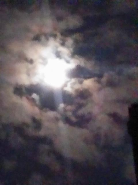冬至の夜の月明かりとゆず(柚子)