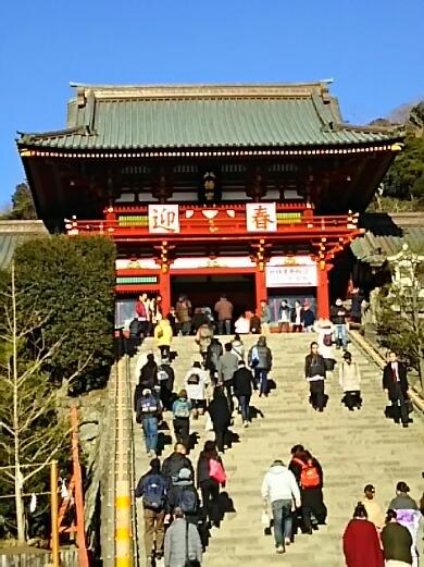 今日は鎌倉の鶴ヶ岡八幡宮へ初詣に行って来ました!