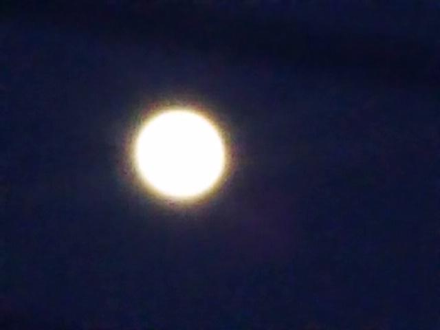 久々のお月様